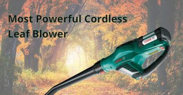 Most Powerful Cordless Leaf Blower